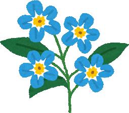 flower_wasurenagusa